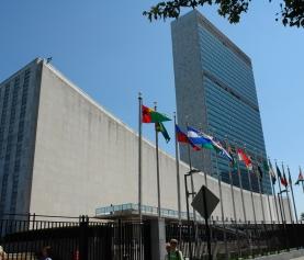 CG-Raad: Nederland moet VN-verdrag ratificeren